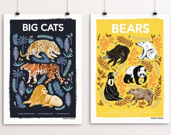Set of Two Natural History Prints - Big Cats, Bears, Moths, Wolves, Sloths and Foxes