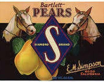 Diamond S Brand Bartlett Pear Crate Label