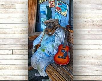 New Orleans Art - Crocodile Rock - Architecture - Door Photography - Cajun Cottage - Bayou Art - Wood Panel - Art Panels