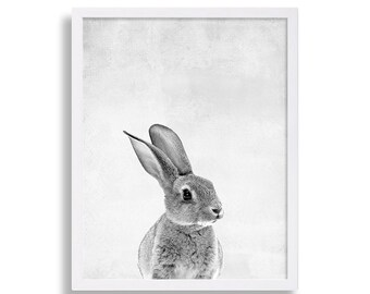 Cute Bunny Print Animal Art Kids Room Decor Babys Room Art Black and White Decor Nursery Decor Animal Print Peter Rabbit Print Animal Photo