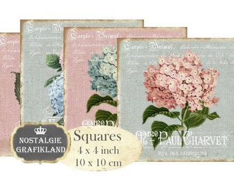 Hydrangea Hortensia Shabby Chic Roses Flowers Squares Coaster 4 x 4 inch Decoupage Instant Download digital collage sheet transfer TG133