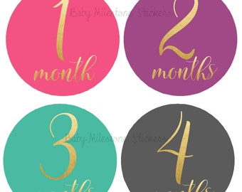 Baby Girl Monthly Stickers, Baby Month Stickers,  Faux Gold Foil, Bodysuit Stickers, Shower Gift Nursery Decor Photo Prop Foil