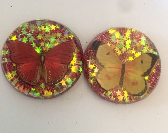 Resin butterfly magnets