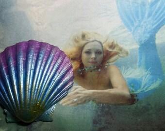 Seashell hair clip, mermaid hair clip, seashell hair accessories, under the sea hair clip, Pearl hair clip, hand painted seashells