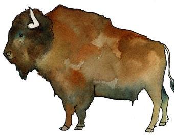 Watercolor Brown American Buffalo Print
