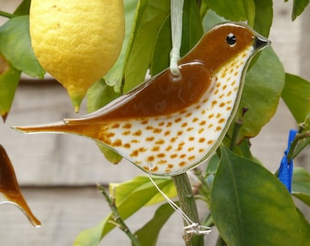 Fused glass thrush hanging ornament for indoors or outside