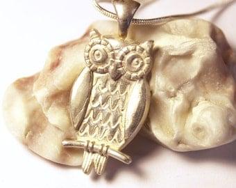 Owl, Silver Pendant, Bird Jewelry, Silver Necklace, Pendant Necklace, Bird, Nature Jewelry, Silver Jewelry, Owl Necklace, Owl Pendant