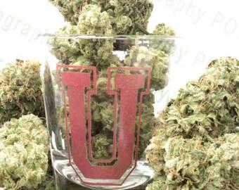 Weed University (2 options) - Cannabis Art - Pot Leaf - 420 Print - Marijuana Photo - POTography Weed Pipe - Shot Glass Poster - University