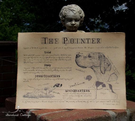 Antique styled dog standard - Pointer