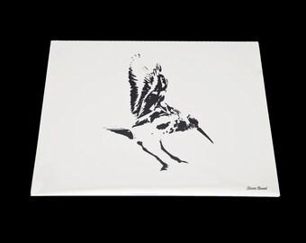 8x10 Sandpiper Print