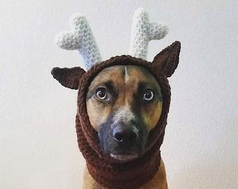 Reindeer Dog Hood