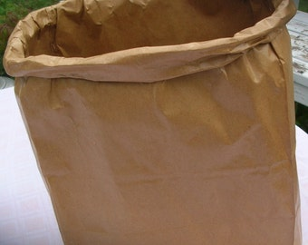 Plain Brown Grocery Bag Wastebasket