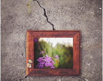 Purple Flower Photography. Flower Photography. Flower Photo. Botanical Photo. Botanical Print. Nature Print. Nature Photography.