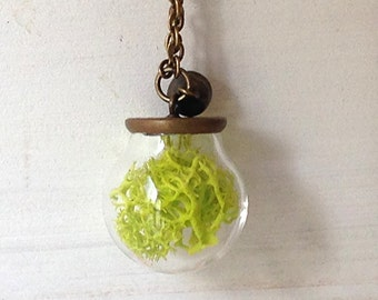 EARTHQUAKE AID-long necklace with glass sphere and lichens