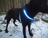 """2XL size BLUE USB rechargeable LED illuminated safety harness for big dogs, chest circumference: 85 cm / 33.5"""""""