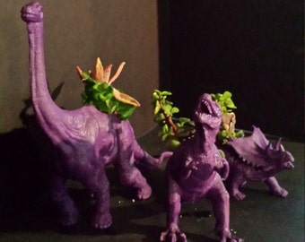 Adorable Purple Dinosaur pots with mixed succulents
