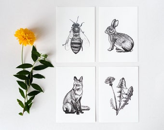Hand drawn nature postcards set, fox, bunny, bee, dandelion, animal drawing, snailmail greeting cards, pencil drawings, blank notecards pack