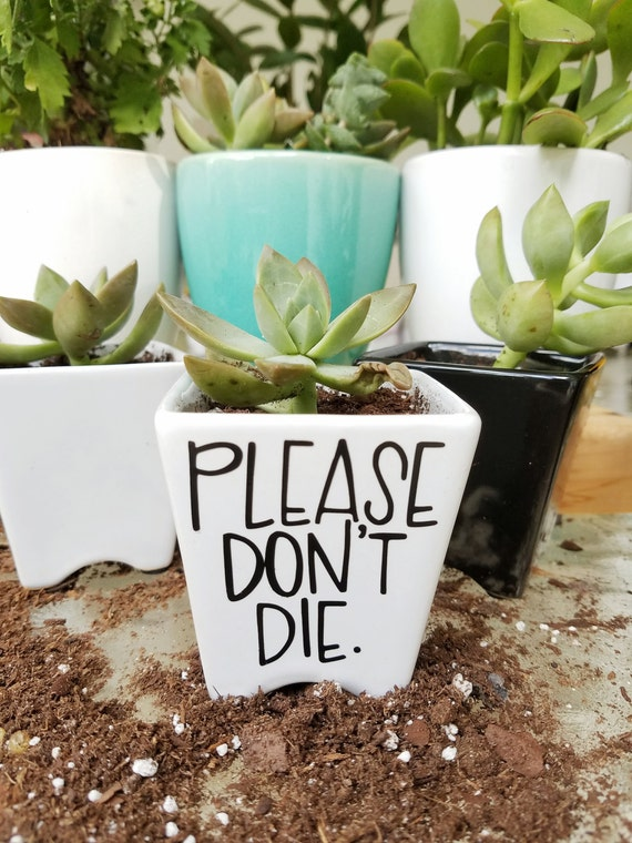 Please don 39 t die mini planter hand lettered succulent for Gardening 7 days to die