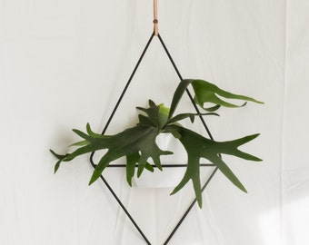 The Fernie - Hanging Planter Wire Steel Metal