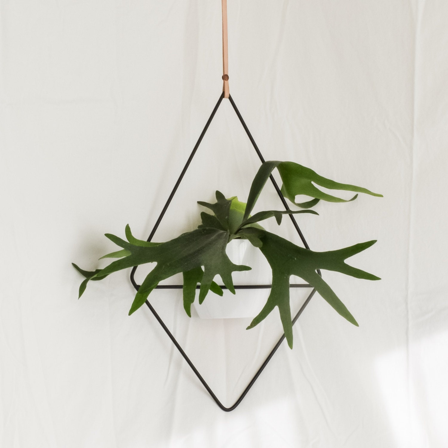 The fernie hanging planter wire steel metal - Metal hanging planter ...