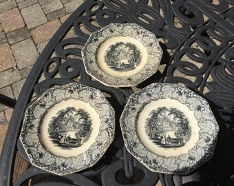 Set of three F.M. & Co Shelton transferware plates, sold as set