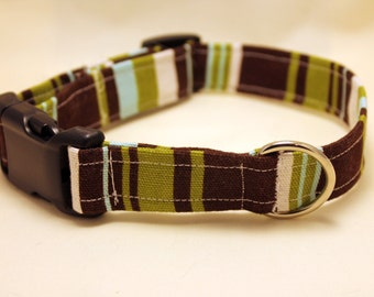 Blue, Green, and Brown Striped Collar