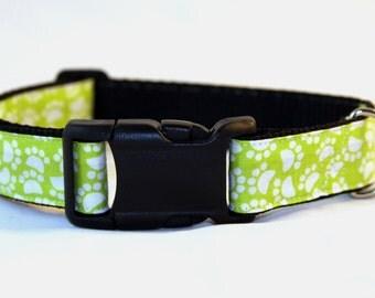 Neon Green Dog Collar