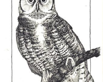 Striped Owl blank greeting card
