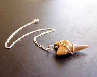 Silver Wrapped Fossilized Shark Tooth (Medium)
