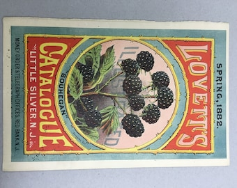 Vintage ORIGINAL Seed Catalog Cover from 1882