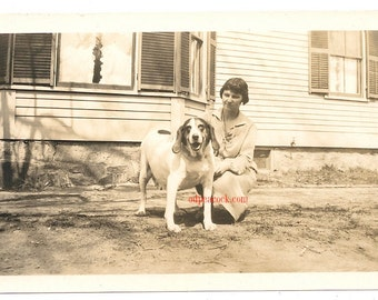 Vintage dog pet animal floppy ears photo image
