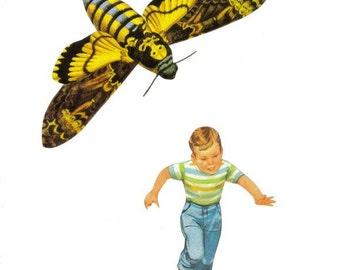 Bug Art, Original Collage, Artwork on Paper, Death Head Moth Wall Art, Strange Insect, Oddity, Odd Wall Decor, Strange Curiosity