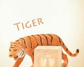 tiger photo, letter t art, tiger art, nursery art, nursery decor, child room decor, child room art, letter art, alphabet photo, alphabet art