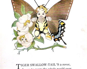 Tiger Swallow Tail Butterfly, Palamedes Swallow Tail Butterfly - 1914 Antique Book Page - Butterfly Babies, Butterfly Children - 9 x 6