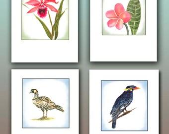 Hawaiian note cards, tropical stationary, pink plumeria, myna bird, Nene goose, Hawaiian watercolors, pink orchid,boxed notes