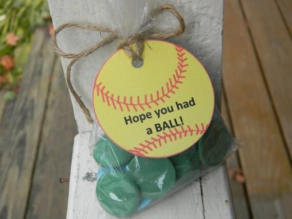softball goodie bags with tags set of 10 softball theme