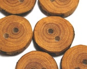 Natural Wooden Buttons from AskCheese, Rustic Wooden Buttons, Handmade Crabapple Tree Branch Wood Buttons, 7/8 Inch (23 mm), Set of Six