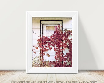 Door Photography, Rustic Photograph, Rural Decay, Abandoned, Farmhouse, Red Ivy, Nature Photography, Red and White, Cottage, Dark, Rural