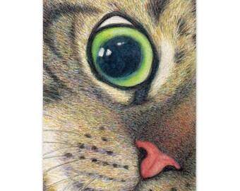 cat art print - A Tabby Cat's Wide Open Eye - cat drawing pet portrait, cat lover's gift, realistic artwork, nursery room decor