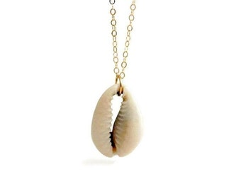Cowrie Shell Necklace / Gold Filled Jewelry / Cowrie Shell jewelry / Real Shell Necklace / Natural Sea Shell / Beach Necklace