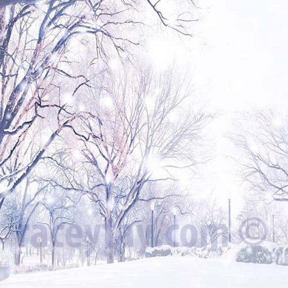 Winter Art Print, Landscape, Snow, White, Mauve, Gray, Nature Photography, Tree Prints, White Wall Art