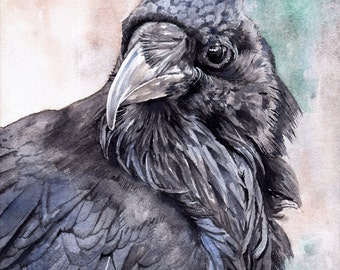 Raven Study - Open edition print of an original watercolor (fits 11x14 frame)