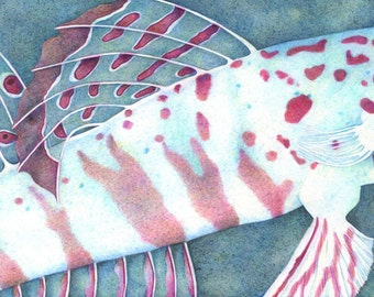 Pastel Goby/Giclee/Print/Blue Spotted Watchman/Reef Fish/Pastel Colors/Colored Pencil/Ocean
