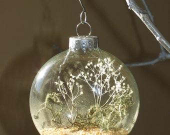 Living Ornament, Unique Ornament with Moss and Lichen, Garden Ornament, Earth Ornament, Plant Ornament, Glass Terrarium Ornament