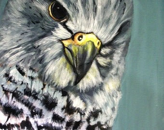 Guarding Over You, Falcon, Acrylic, Original 11 x 14 painting