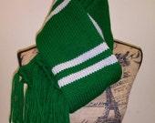 Harry Potter inspired upperclass Slytherin scarf