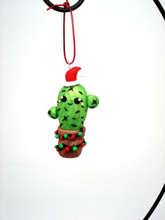 Where Can I Buy A Christmas Cactus