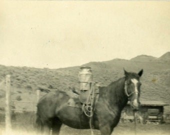 "Vintage Photo ""Delivering Cream"" Snapshot Old Antique Photo Black & White Photograph Found Paper Ephemera Vernacular - 145"