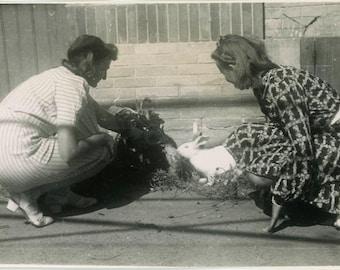 "Vintage Photo ""The Easter Bunny Finders"" Rabbit Snapshot Old Antique Photo Black & White Photograph Found Paper Ephemera Vernacular - 54"