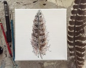6x6 Original Turkey Feather Painting
